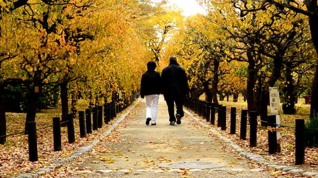 Alter Mann und Frau zu Fuß durch den schönen Park