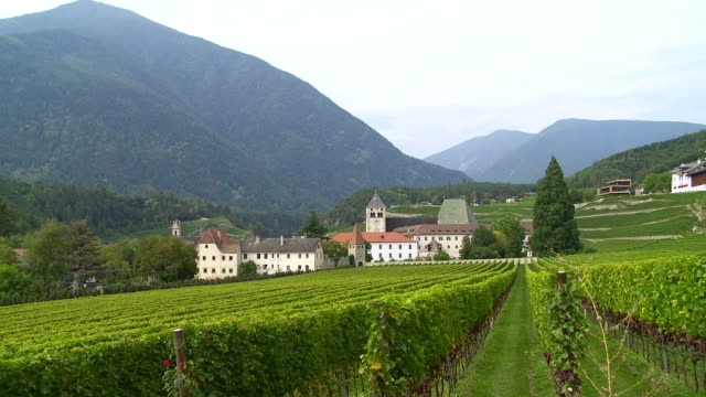 Old Monastery Surrounded by Vineyards PAN