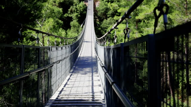 Old suspension bridge in the forest