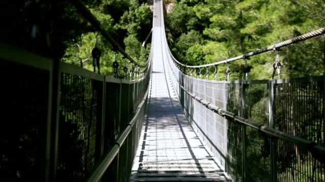 Vecchio ponte sospeso nella foresta