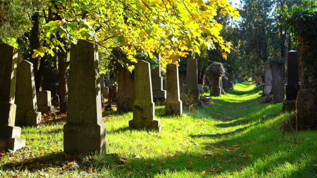Gamla gravstenar i höst