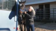 Older Caucasian woman petting horse