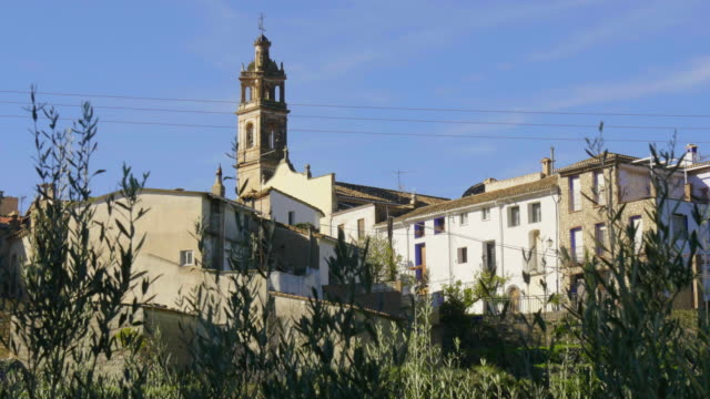 oleander branches in front of church steeple and white village houses of Benialí
