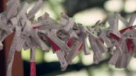 Omikuji (fortunes written on paper found at Japanese shrines) moving in the breeze.