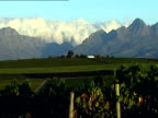 On Assignment Black winemakers SOUTH AFRICA Stellenbosch Mist or cloud over mountains with trees in foreground Clouds over mountains PULL OUT...