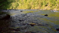 Oosterneck Creek at Tellico River in the Cherokee National Forest near by Cherohala Skyway