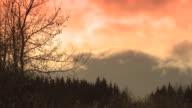 Orange, fluffy clouds race above an evergreen forest in Alaska.