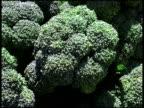 Organic Broccoli Heads