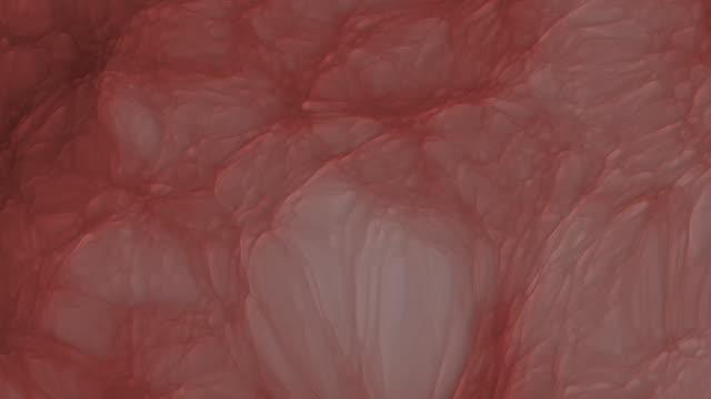 Organic Tissue