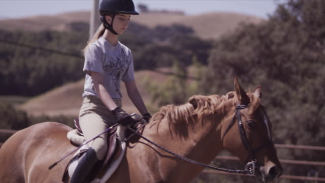 Outdoor jumping ring, close on Haley, Haley walks horse, slow motion