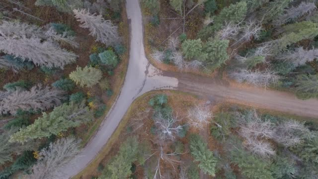 Overhead aerial footage of country roads