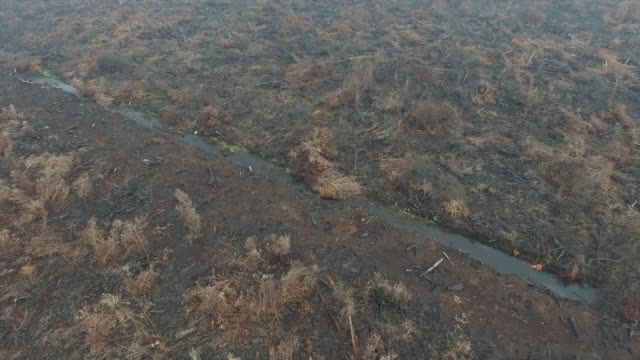 Overhead fly by views of a palm oil plantation and burnt vegetation in this aerial video taken in Ogan Komering Ilir South Sumatra Indonesia on...