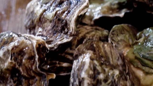 Austern auf Teller mit Tabasco-Sauce und Zitrone