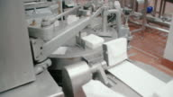 Packaging line at food processing plant. Packing machine at dairy factory. Dairy products at conveyor belt. Automated production line