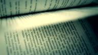 Freunde in einem Buch, Seiten