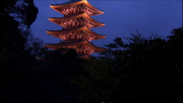 Pagoda of Sensoji Temple at night and reflection in water Tilt Down