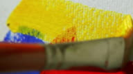 Paintbrush, Yellow Color