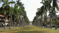 WS Palm tree lined lawn with administrative building in distance / Panama City, Panama
