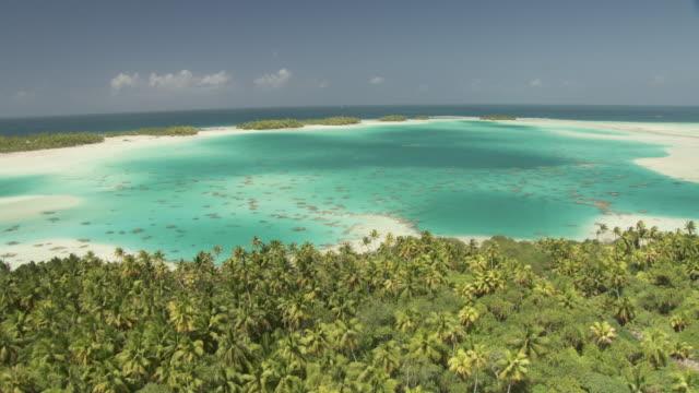 Palm trees and blue lagoon at edge of tropical atoll lagoon, Rangiroa, French Polynesia