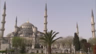 Palm trees and minarets surround the Sultan Ahmed mosque in Istanbul. Available in HD