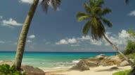 WS Palm trees and rocks on beach / Seychelles