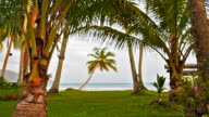 Palm trees frame to sea background