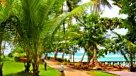 Palms park near the sea