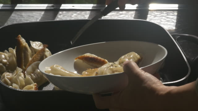 Pan fried Chinese dumpling