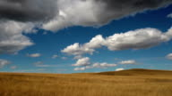 Pan left and right of golden grassed prairie landscape with puffy clouds across deep blue sky with shadows on landscape.