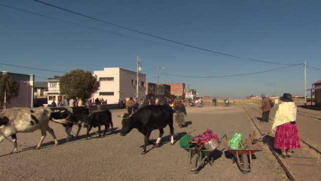 L-R Pan of main street/railway from cattle to train station and sign, Tiwanaku Tiahuanaco/Tiahuanacu, Bolivia