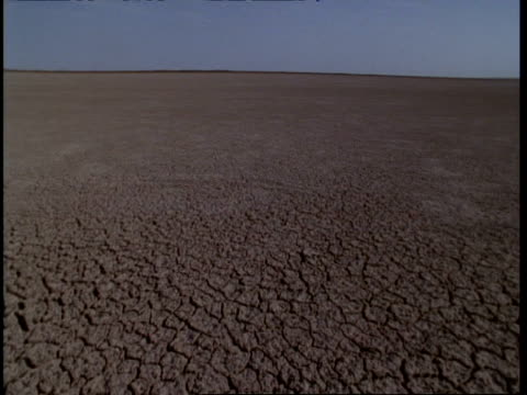 WA Pan right 360 degrees, cracked earth of barren desert landscape, Gujarat, India