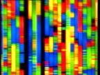 Pan right across multi-colored DNA code processing on display screen