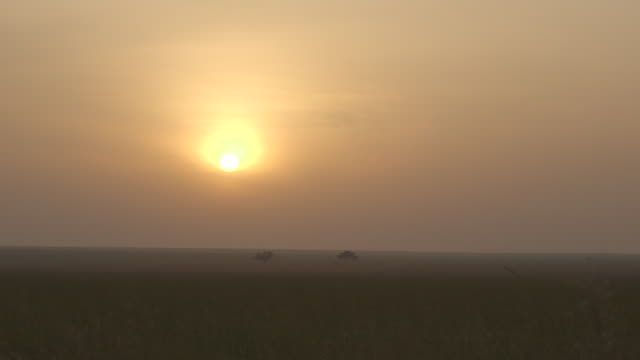 Pan right onto the sun rising over the savannah, Tanzania.