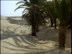 Pan right over sand dunes to palm trees and oasis in desert, Tunisia