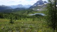 Pan up thru mountain meadow to distant mountain scene
