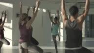 MS PAN_Big class doing the tree yoga pose/vrkasana, in rooftop studio