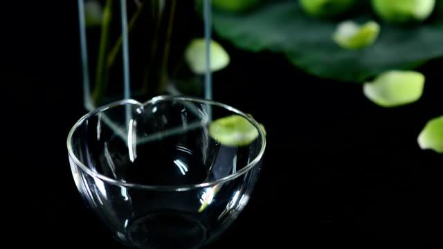 panning :  lotus in a vase