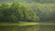 panning : reservoir lake at morning and mist on water surface
