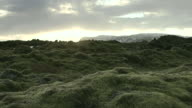 Panning shot across a field of moss covered rocks in south Iceland.