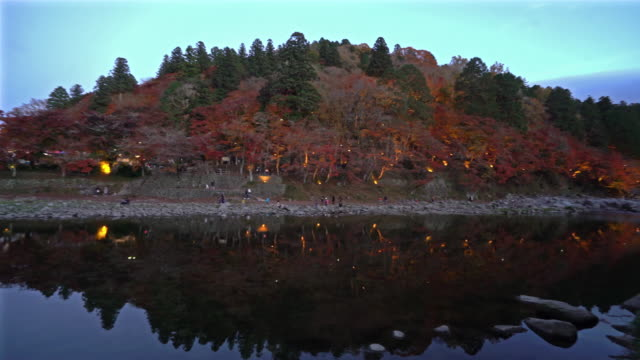 Panning shot Korankei Forest park night with light illumination Nagoya Japan
