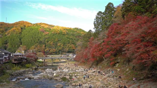 Panning shot: korankei Forest park with Autumn Red Leave Nagoya Japan