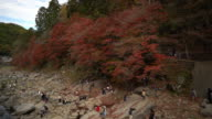 Panning shot: korankei Forest park with Autumn Red Leave Nagoya Japan