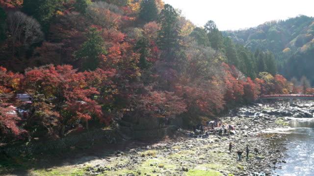 Panning Shot: Korankei Waldpark mit Herbst rot verlassen Nagoya Japan