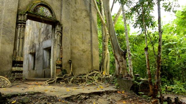 Schwenken: die Ruinen der alten Tempel in forest