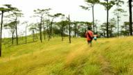 panning : two men walking in yellow grass