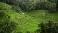 Schwenken: Berg hohe hängen hat, Thai Landwirt kann zwar Reis Terrasse