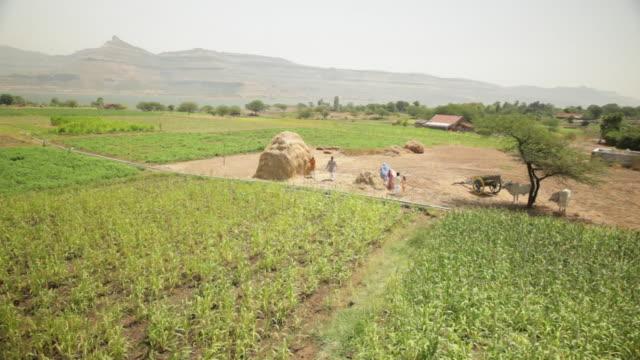 Panoramic view of farms