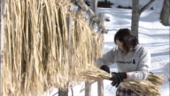 A paper craftswoman bundling barks of Kozo (paper mulberry), Japan