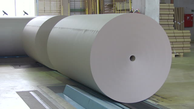 MS Paper production at paper mill / Weener, Lower Saxony, Germany