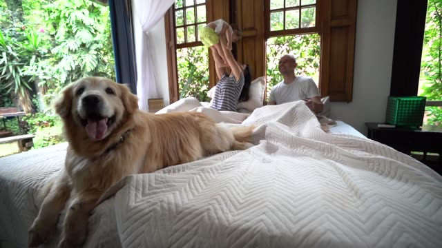 Parents Having Fun with a Cute Daughter at Bed